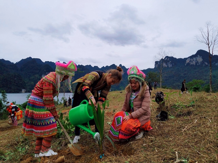 Top 10 Hoa khôi Du lịch Việt Nam 'phủ xanh' đất trồng hồ sinh thái Na Hang - Lâm Bình