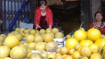 Trái cây bày mâm ngũ quả tăng giá dịp Tết Nguyên đán Tân Sửu