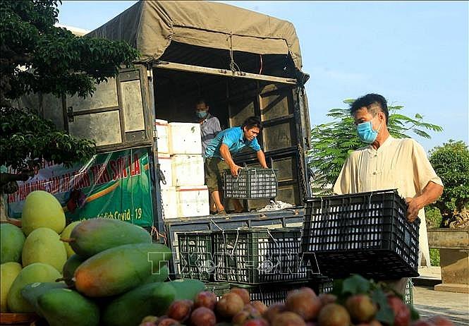 Tập trung tháo gỡ khó khăn để lưu thông hàng hóa trong mùa dịch