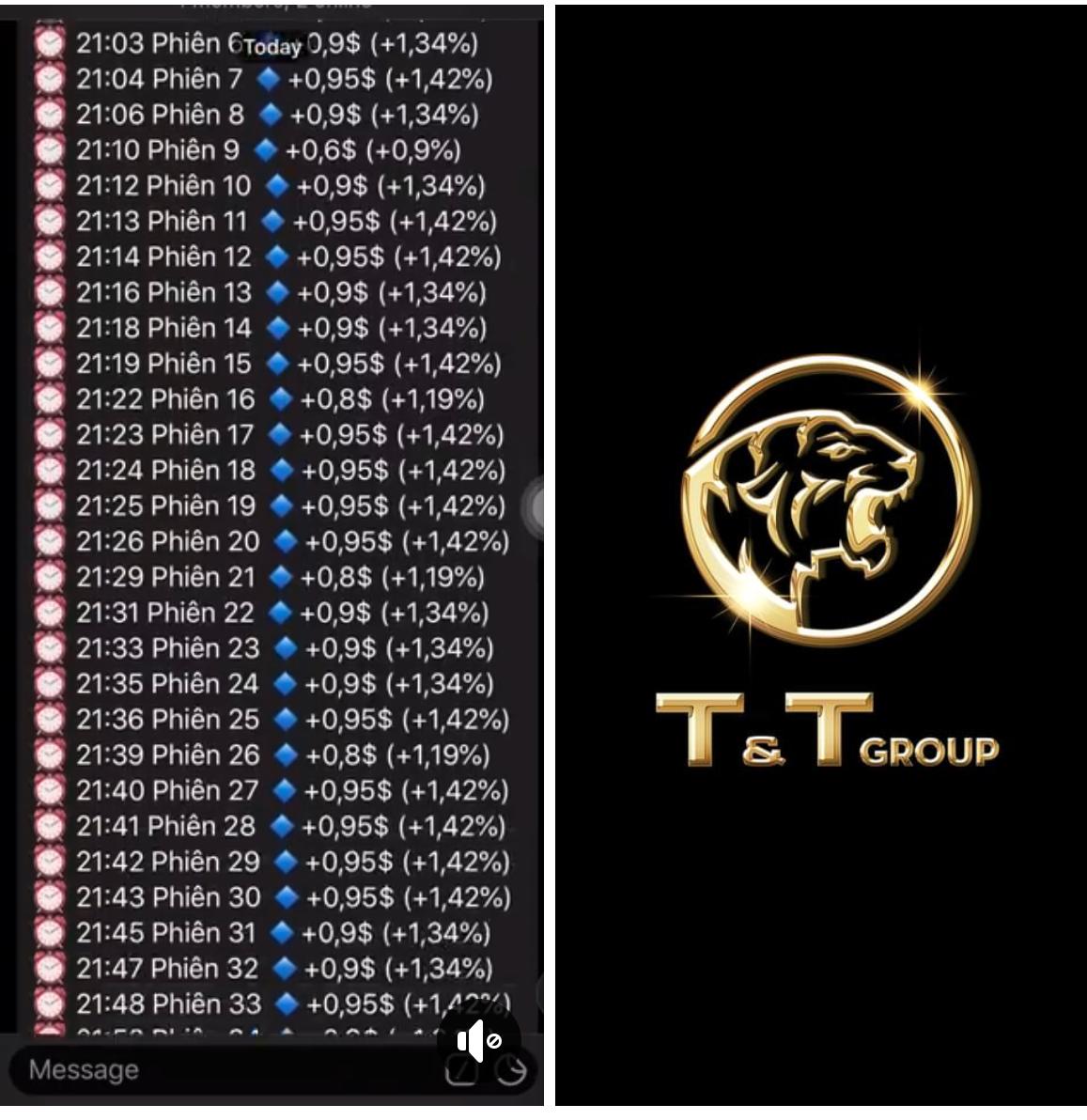 Phát hiện sàn tiền ảo mạo danh thương hiệu Tập đoàn T&T Group