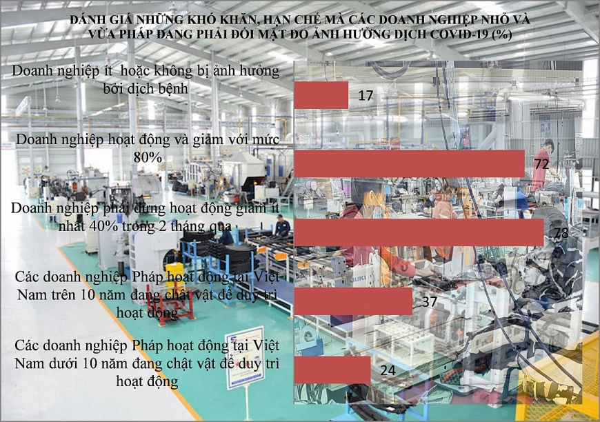 Nguồn Khảo sát của Phòng Thương mại và Công nghiệp Pháp tại Việt Nam. Đồ họa Trọng Triết